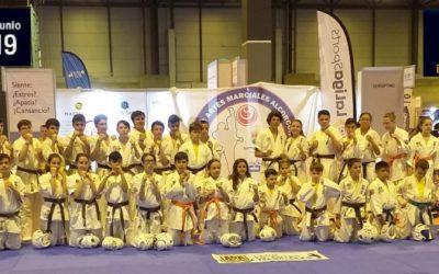 ADA Club Artes Marciales en IFEMA
