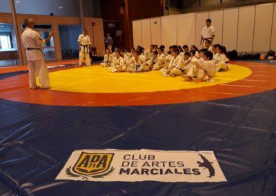012 2019 06 09 Exhibicion Club Ifema Feria Sport