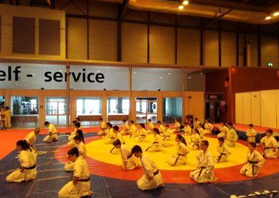014 2019 06 09 Exhibicion Club Ifema Feria Sport